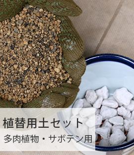 植替用土セット 多肉植物・サボテン用